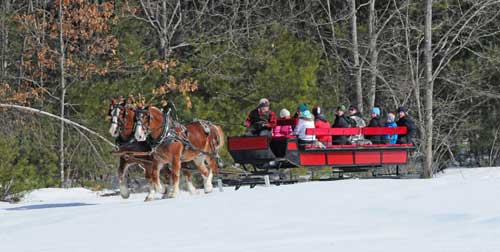 King Pine Sleigh Ride Purity Spring Resort Madison New Hampshire