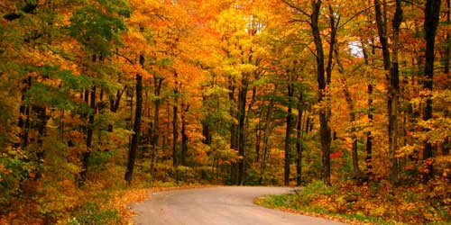 Hiking And Biking Tours In Vermont