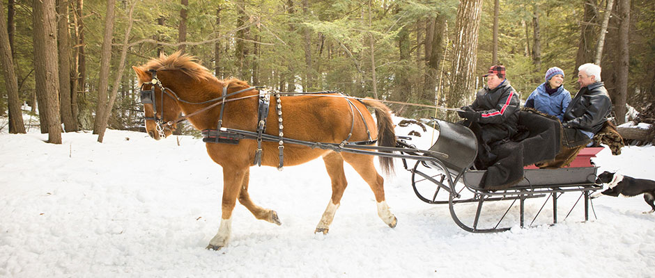 Sleigh Ride in New Hampshire